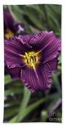 Purple Lilly Beach Towel