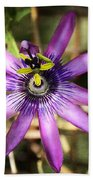 Purple Passion Flower  Beach Towel