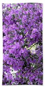 Purple Screen Square Beach Towel