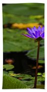 Purple Waterlily Beach Towel