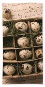 Quail Eggs In Box Beach Towel