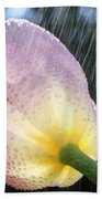 Rain Falling On A Tulip Beach Towel