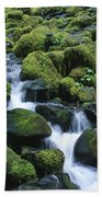 Rain Forest Stream Beach Towel