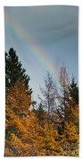 Rainbow Forest Beach Towel