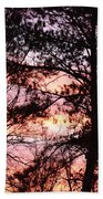 Rainbow Forest Beach Towel