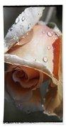 Raindrops On Roses Beach Towel