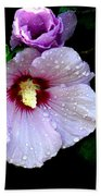 Raindrops On Roses Of Sharon Beach Towel