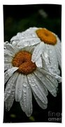 Rainy Day Daisies Beach Towel