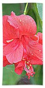 Rainy Day Hibiscus Beach Towel