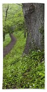 Ramsons By Path In Woods, County Louth Beach Towel