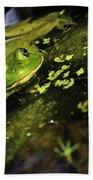 Rana Clamitans Or Green Frog Beach Towel