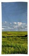 Rangeland View Beach Towel