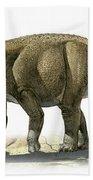 Rapetosaurus Krausei, A Prehistoric Era Beach Towel