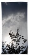 Reaching For The Clouds Beach Towel