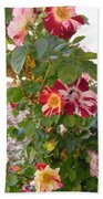 Red And White Roses 3 Beach Towel