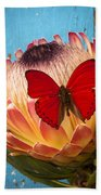 Red Butterfly On Protea Beach Towel