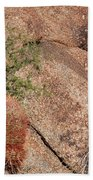 Red Cactus Rock Beach Towel