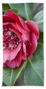 Red Camellia Squared Beach Towel