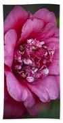 Red Camellia Beach Towel by Teresa Mucha
