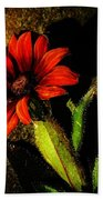 Red Coneflower Beach Towel