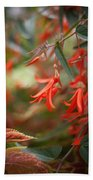 Red Exotic Beach Towel