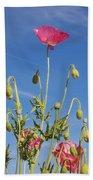 Red Flower Against Blue Sky Beach Towel