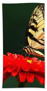 Red Flower And Butterfly Beach Towel