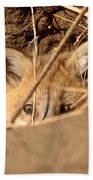 Red Fox Pup Peaking Out Of Den Beach Towel