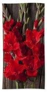 Red Gladiolus Beach Towel