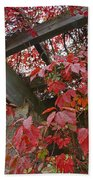 Red Grape Leaves And Beams Beach Towel