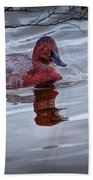 Red Headed Duck Beach Towel
