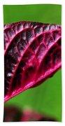 Red Leaf Beach Towel by Kaye Menner
