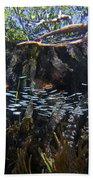 Red Mangrove Rhizophora Mangle Aerial Beach Towel