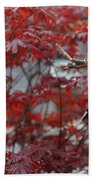 Red Maple Beach Towel