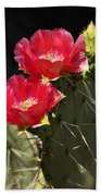 Red Prickly Pear Cactus  Beach Towel