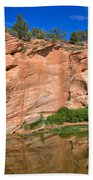 Red Rock Formation In The Kaibab Plateau In Grand Canyon National Park Beach Towel