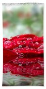 Red Rose Reflections Beach Towel