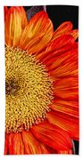 Red Sunflower II  Beach Towel