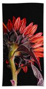 Red Sunflower X Beach Towel
