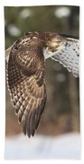 Red Tailed Take-off Beach Towel