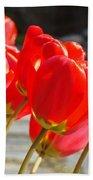 Red Tulip Flowers Art Prints Spring Florals Beach Towel