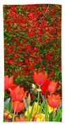 Red Tulip Flowers Beach Towel