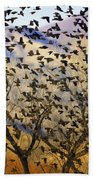 Red-winged Blackbirds At Sunset Beach Towel
