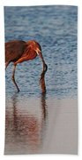 Reddish Egret Checking It Out Beach Towel