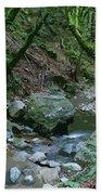 Redwood Creek Art Beach Towel