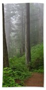 Redwood Path Beach Towel