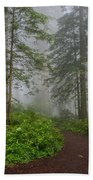 Redwoods Rising In Fog Beach Towel