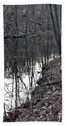 Reflection Creek  Beach Towel