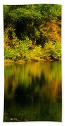 Reflection Of Autumn Colors Beach Towel