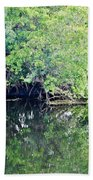 Reflection On The North Fork River Beach Towel